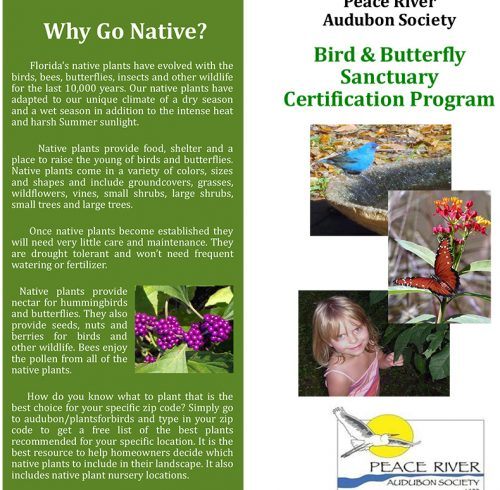 Bird And Butterfly Sanctuary - Yard Certification