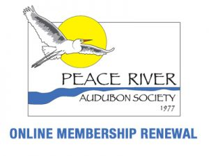 membership renewal