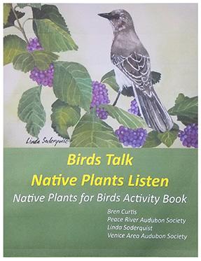 Birds Talk cover